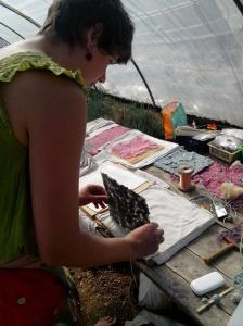 Anne Da Silva en train de fabriquer des papiers végétaux